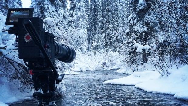 A beautiful scenic shot in the Yukon.