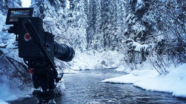 Yukon's reality TV bonanza continues | CBC News