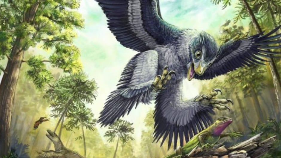 Bird-like dinosaurs' taste for meat was their undoing