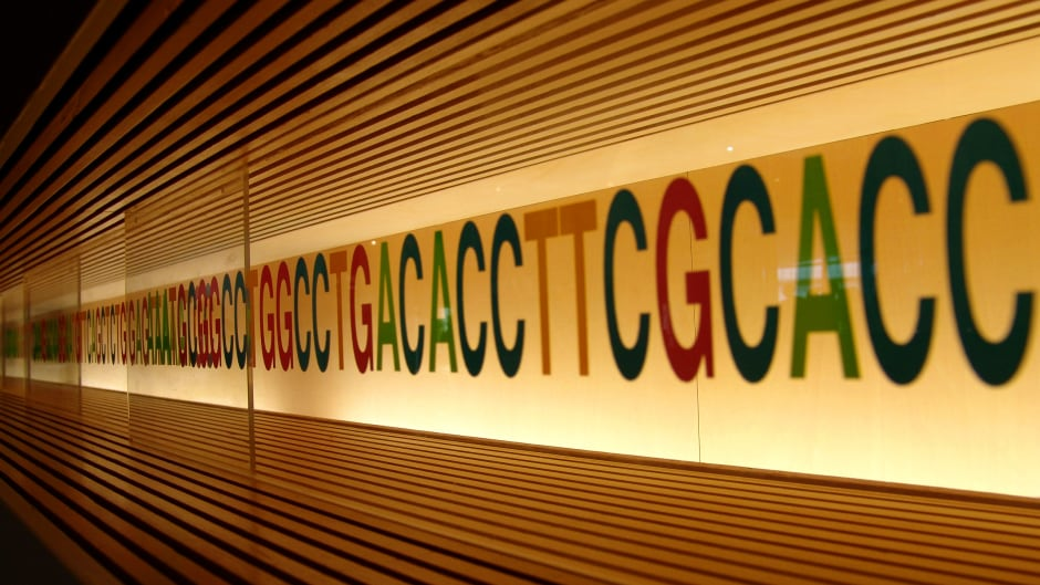 Storing our data in DNA may be a good way to get around digital storage problems like bit rot.