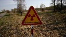 Belarus Chornobyl Radioactive Food