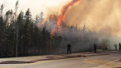 Firefighters fight forest fire on P.E.I.