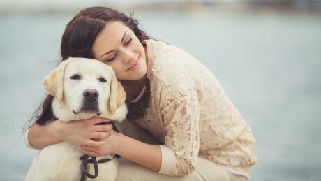 Image result for labrador dog, he likes hugs
