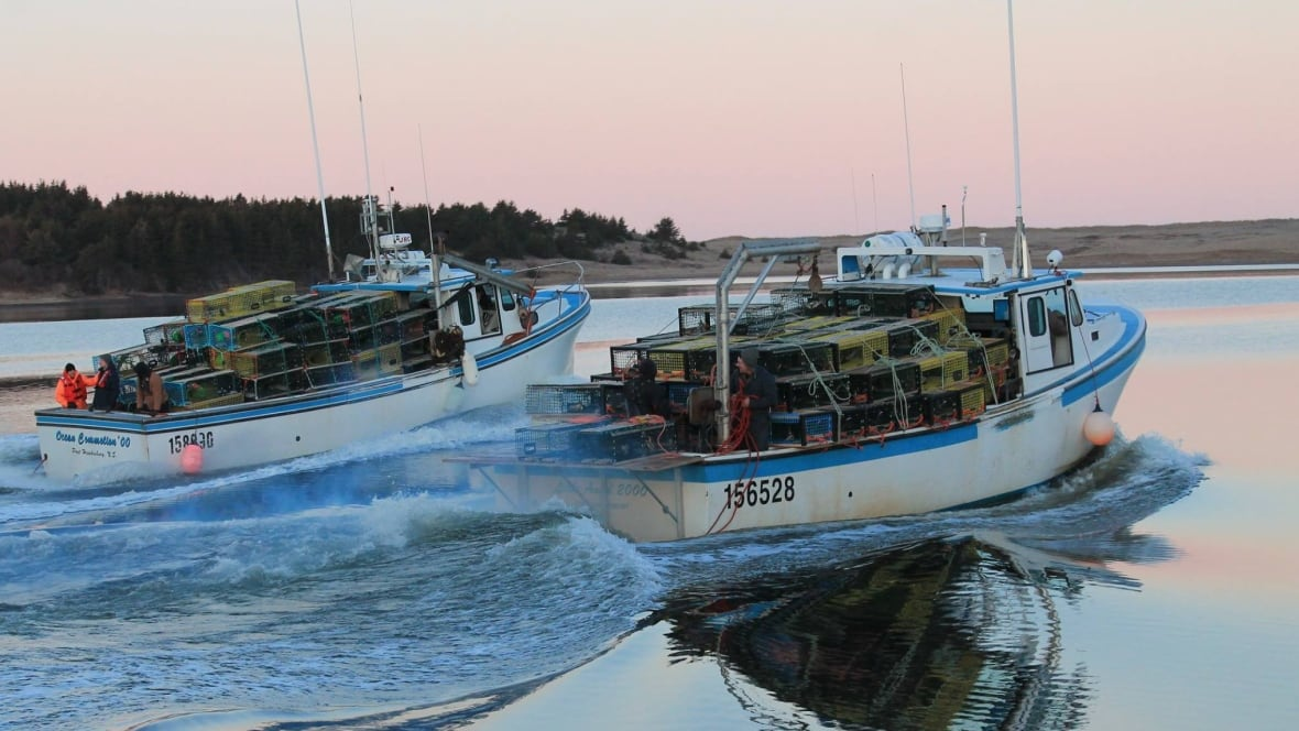 Lobster fishing season begins in northern Nova Scotia - Nova Scotia - CBC News