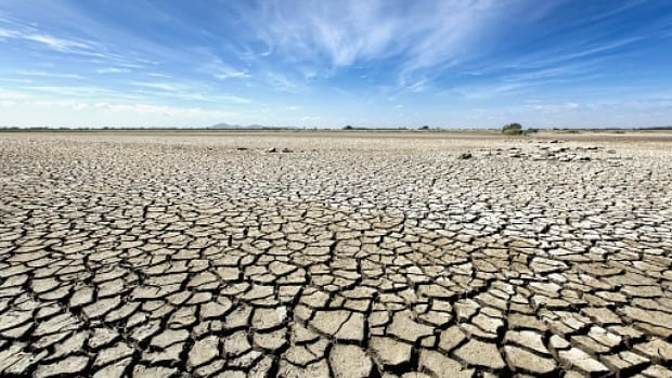 The Prairie Climate Centre believes hot, dry summers are in the future for Saskatchewan.