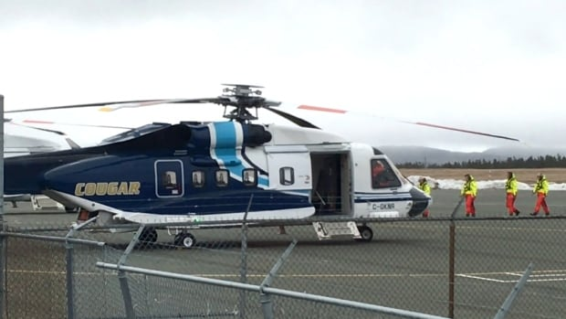 In this file photo, a Cougar helicopter lands in St. John's.