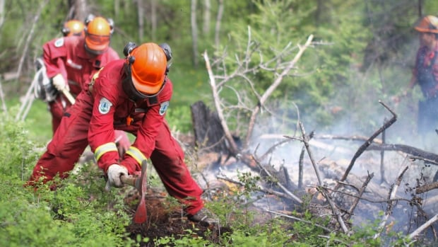 The B.C. Wildfire Service employs around 1,000 firefighters each season. Turnover in the ranks means about 200 new people are hired each year.