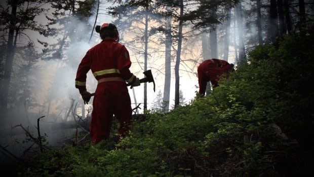 A new recruit to the B.C. Wildfire Service wields a pulaski, as training crews try to extinguish an intentionally-lit brush fire.