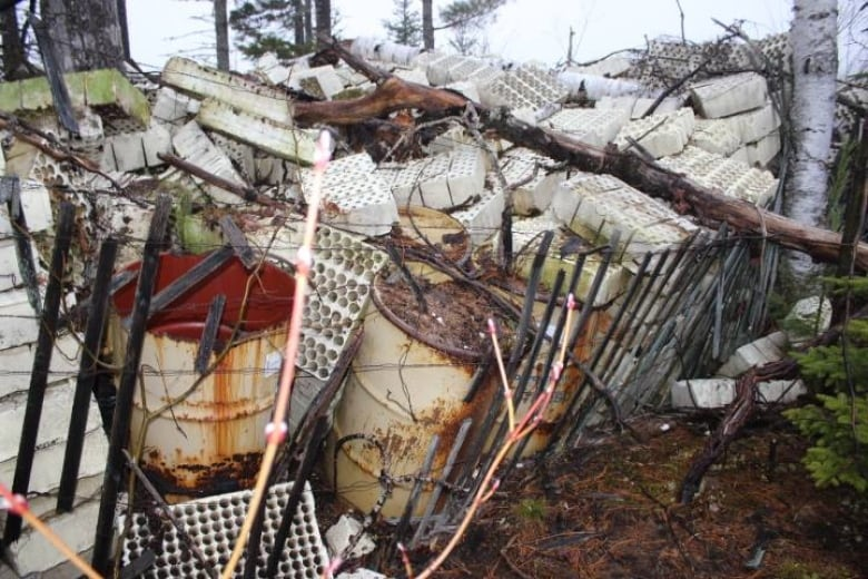 J D  Irving Ltd  directed to clean up illegal dump site in