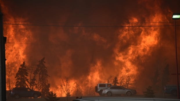 'The Alberta wildfires are an excellent example of what we're seeing more and more of: warming means snow melts earlier, soils and vegetation dries out earlier, and the fire season starts earlier. It's a train wreck,' University of Arizona climate scientist Jonathan Overpeck wrote in an email.