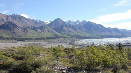 Eco-resort planned for remote area of Yukon's Kluane National Park