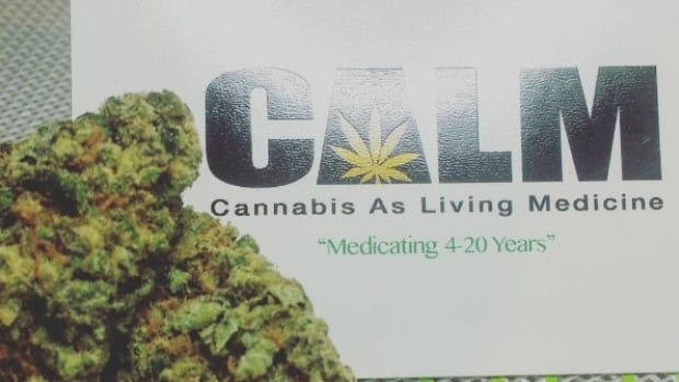 Toronto's oldest medical pot dispensary wants to lead industry out of legal grey area