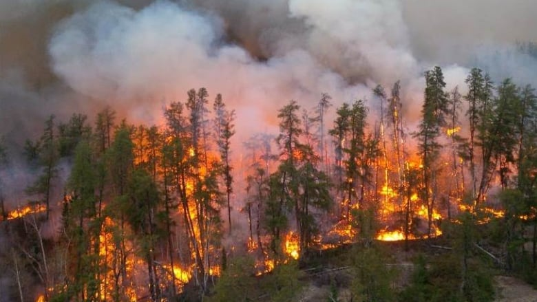 Ontario wildfire officials say they expect 'increased demand' as infrastructure spreads north