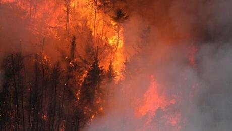 Nopiming/Woodland Caribou park fire