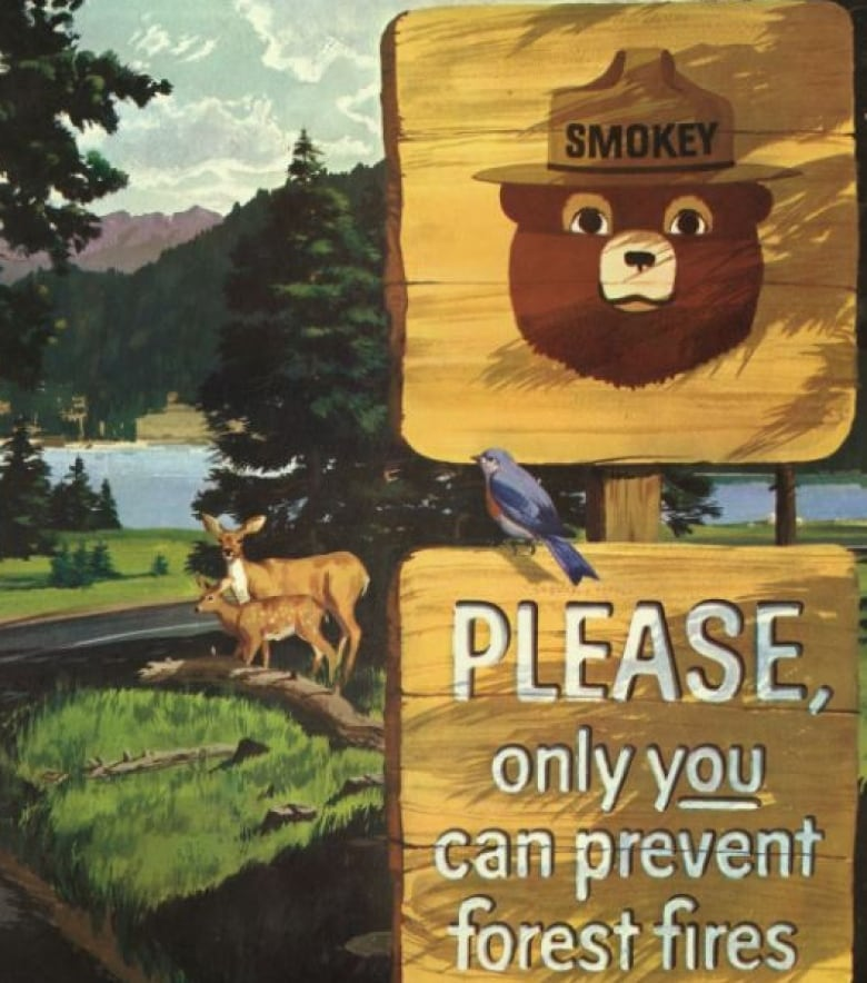 smokey bear still helping to prevent wildfires across north america