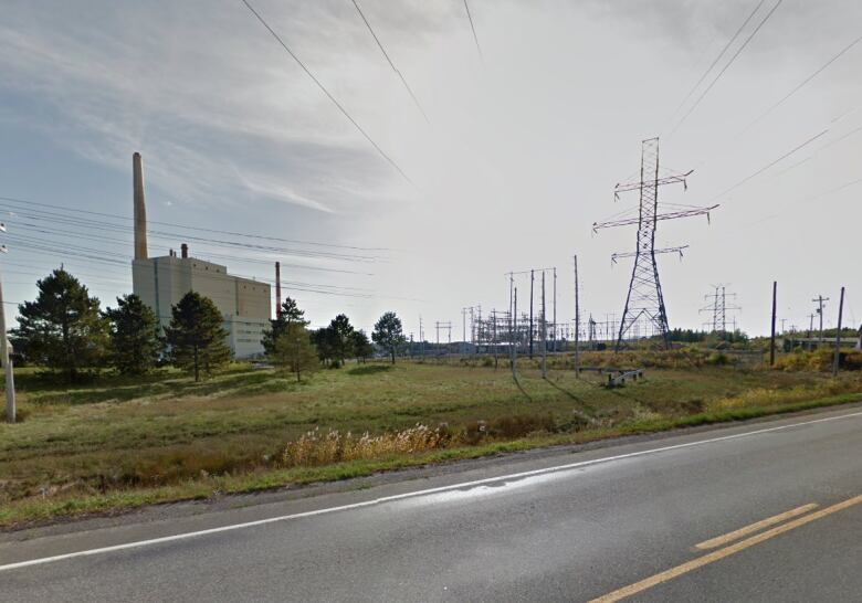 Striped bass mass death studied near Nova Scotia Power plant in Trenton