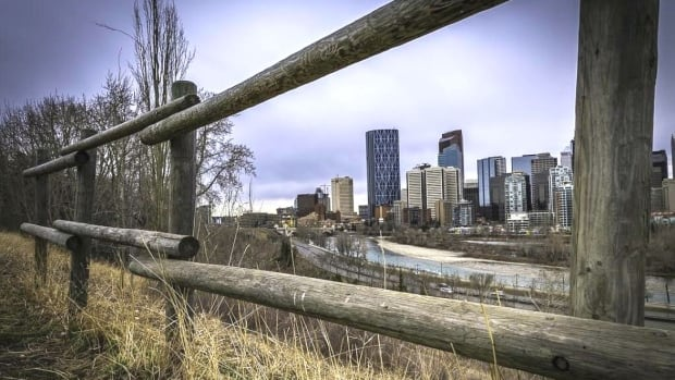 Twelve books that feature Calgary as a backdrop illustrate the many personalities of the city.