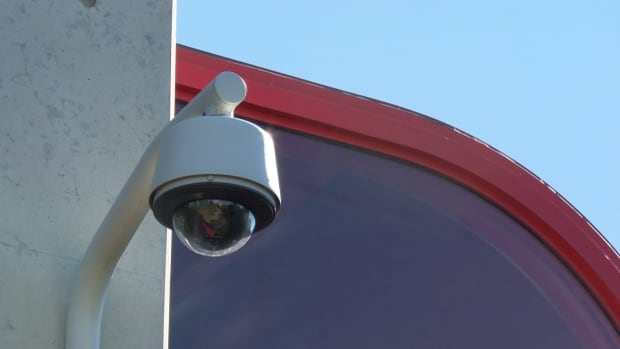 Security cameras could be coming to some Burnaby parks in an effort to improve security.
