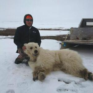 Didji Ishalook with hybrid bear