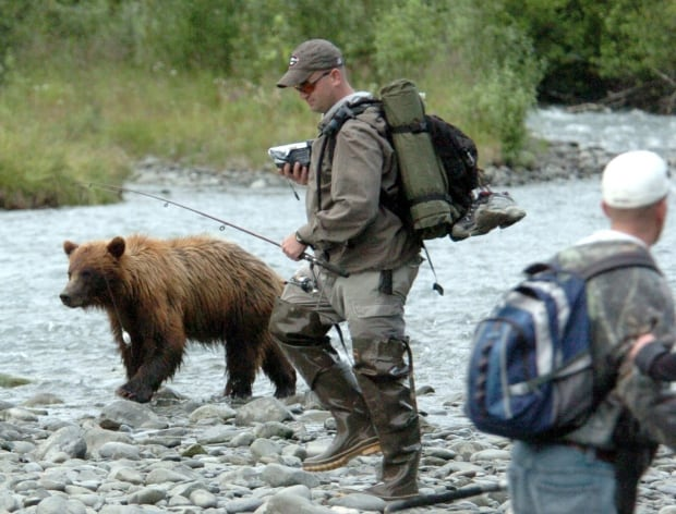 GRIZZLY ON THE ROCKS