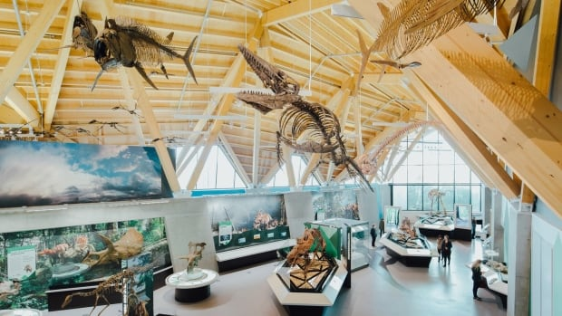 This new museum complex may not be in a major urban area, but its location was strategically chosen: it's the spot where the horned dinosaur Pachyrhinosaurus lakustai once thrived, says Conde Nast Traveler magazine.