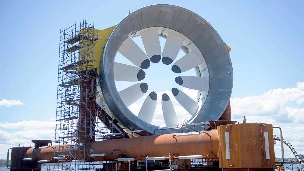 Could Bay Of Fundy Tides Generate Enough Power For All Of
