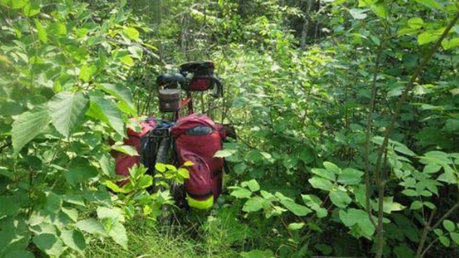 This section of the Trans Canada Trail near Nutimik, Man., was completely overgrown, says Aunger.