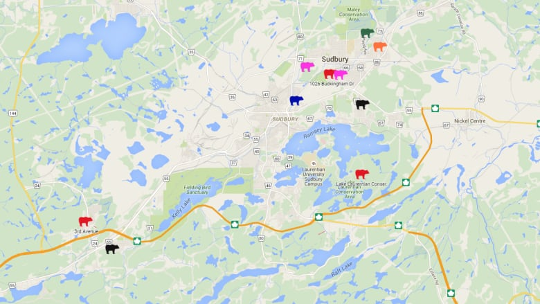 The City of Greater Sudbury's Report-A-Bear website is being accessed by a  number of users; both those who are reporting sightings, as well those  checking ...