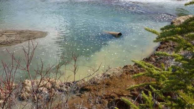 A photo taken by federal inspectors show discharge from the quarry to the Flat River at the Cantung Mine site.