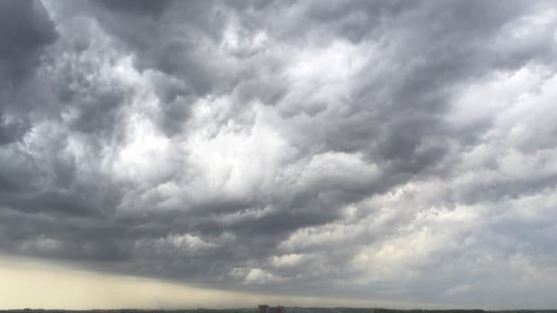 Saturday will be cloudy with a high of 22 Celsius with a risk of thunderstorms in the afternoon.