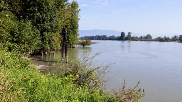 A man has died after police found him in the Fraser River.