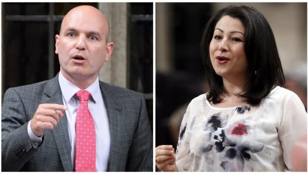 Democratic Reform Minister Maryam Monsef says the Liberal government will support NDP critic Nathan Cullen's proposal to apportion seats on the electoral reform committee according to the popular vote in the last election.