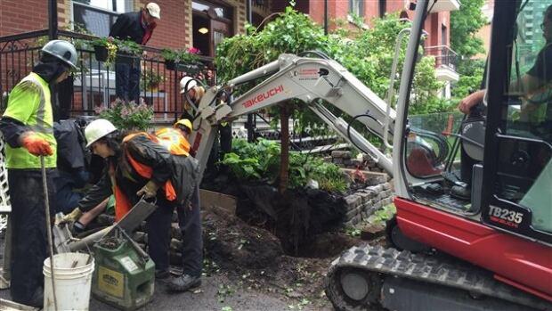 Lead pipe excavation