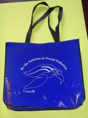 DFO world oceans day bag