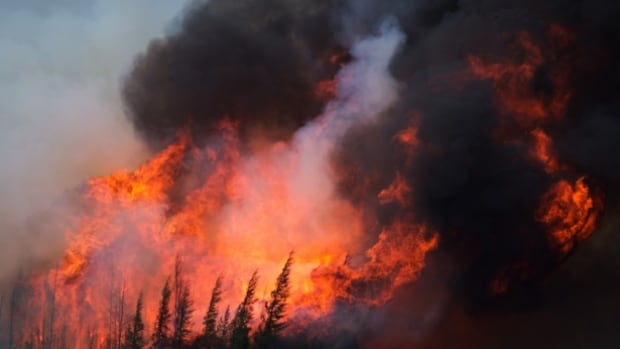 Six weeks after it roared into Fort McMurray, the huge fire in northern Alberta is now classified as 'being held' for the first time.