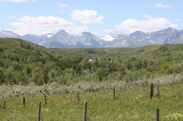 Bruder ranch in Twin Butte, Alberta