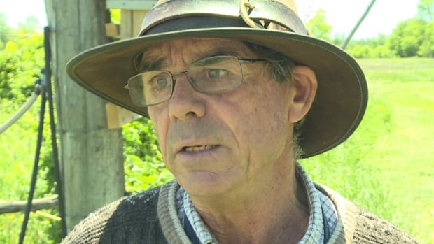 Dick Coote, an organic farmer in Stittsville, says he's filed a claim against the city after it sprayed wild parsnip herbicide on parts of his fields without putting up the warning signs promised in a flyer sent to his home.