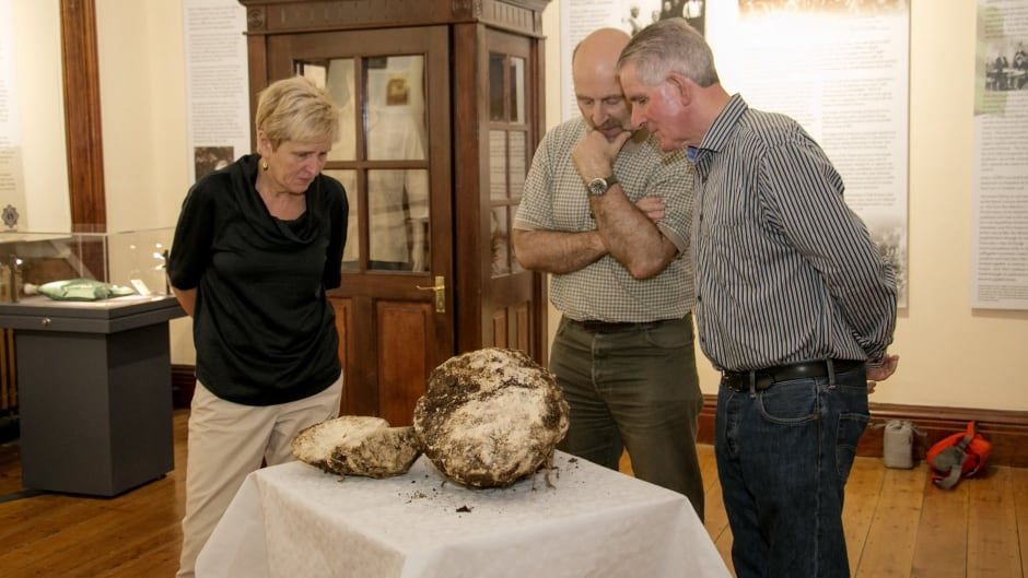 Savina Donohoe (left)  Andy Halpin, National Museum of Ireland (centre) and Jack Conway, the farmer who found the butter.