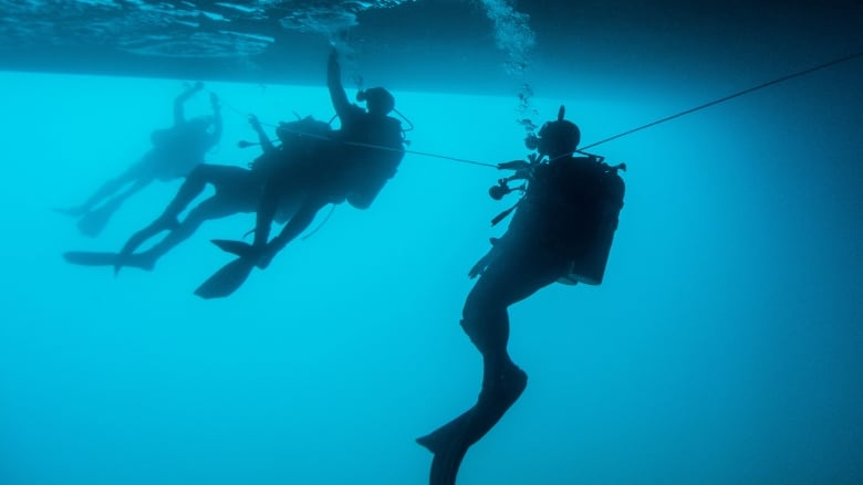 Canadian Forces divers in Caribbean for month of training