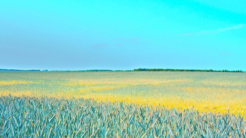 Saskatchewan @Joan E FlickR