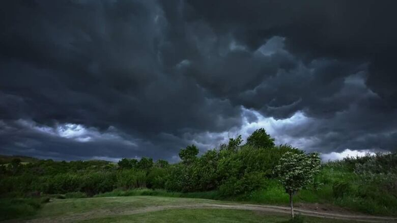 Buffalo Pound Lake Ct Weather Thunderstorms Heavy Rain