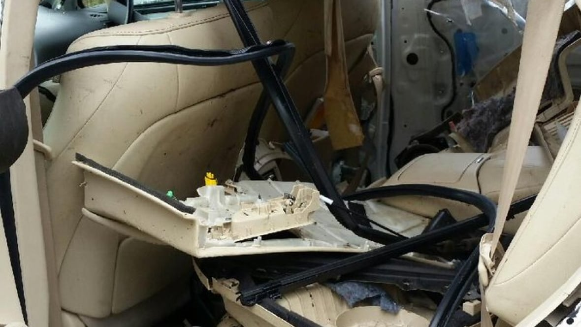 west vancouver police share photo of car destroyed by bear british columbia cbc news. Black Bedroom Furniture Sets. Home Design Ideas