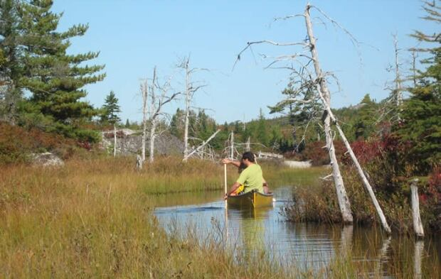 Blue Mountain-Birch Cove Lakes Regional Park