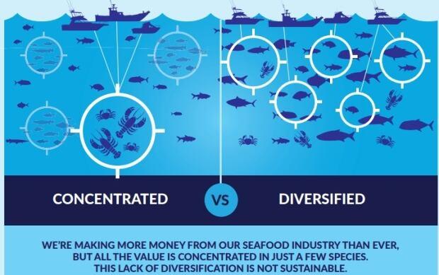 Oceana fish report 01