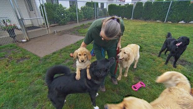 Dennett with puppy