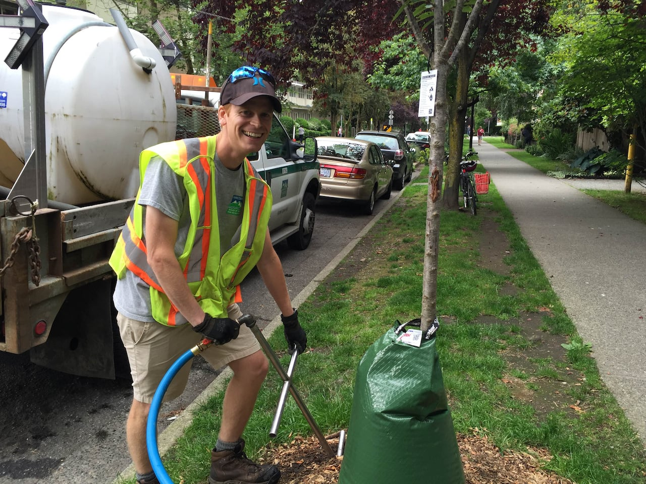 Image result for vancouver street trees watering