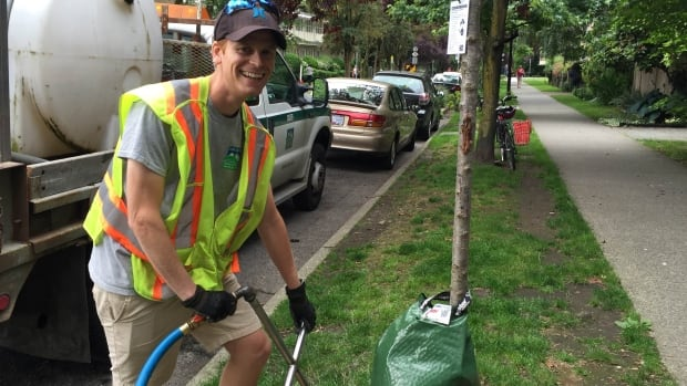 Craig Pagens, an urban tree waterer, uses a steel watering probe to deliver hydration deep into the ground, closer to this tree's root bulb and also to fill the tree bag wrapped around its base.