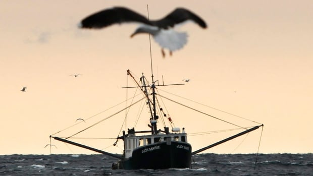 Hubert Francis launched a lawsuit against the Crown in May, claiming that his Indigenous right to fish was infringed upon by the Dept. of Fisheries and Oceans.