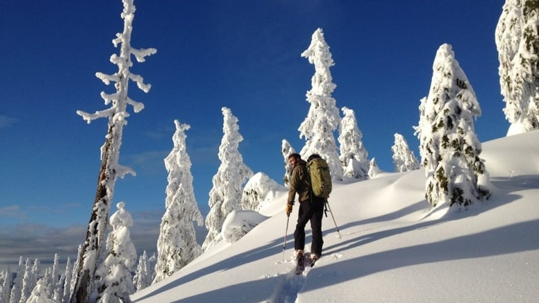 New book details 50 years of the Sierra Club in B.C.