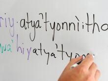 Language Census 20121011